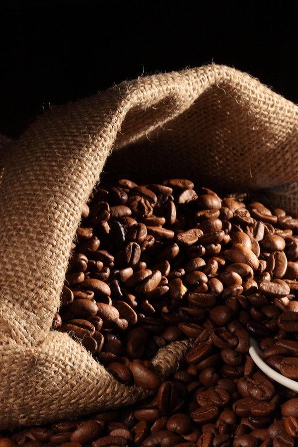 Kaffee-Tipps zu Sorten, Zubereitung und Lagerung