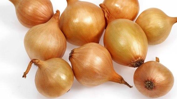 Zwiebel gesund für die haut