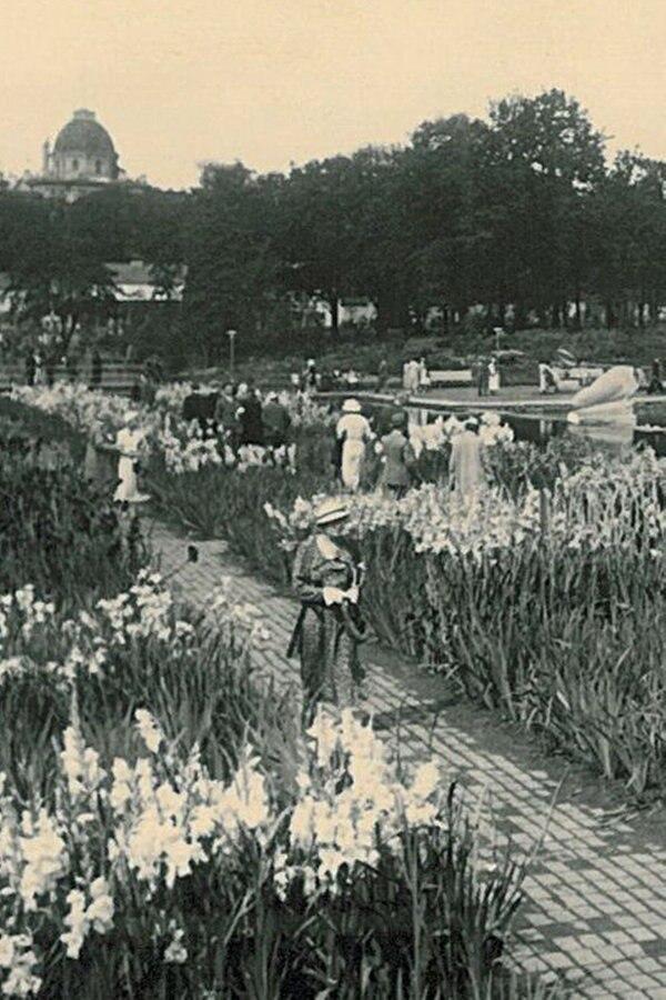 eislaufbahn planten und blomen preise
