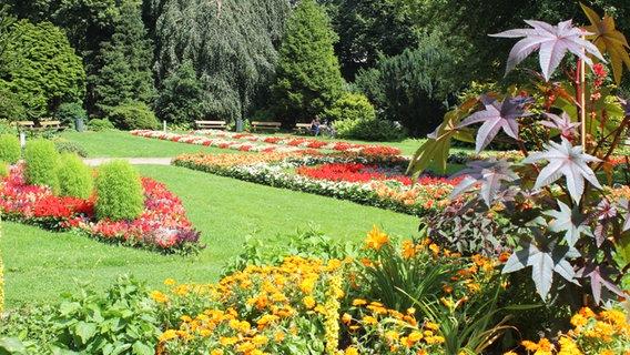Parks Und Botanische Gärten In Hamburg Ndrde Ratgeber Reise