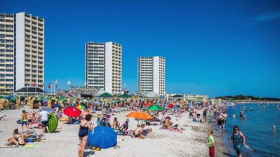 Fehmarn Karte Mit Orten.Fehmarn Sonne Sand Und Surfer Ndr De Ratgeber Reise