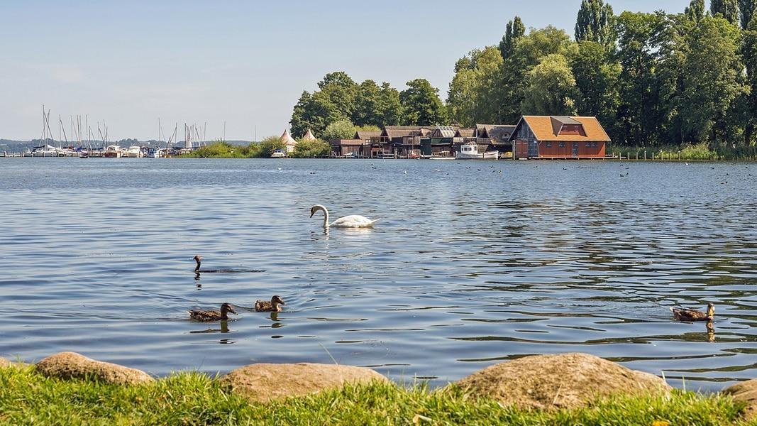 Wassertemperatur Schweriner See