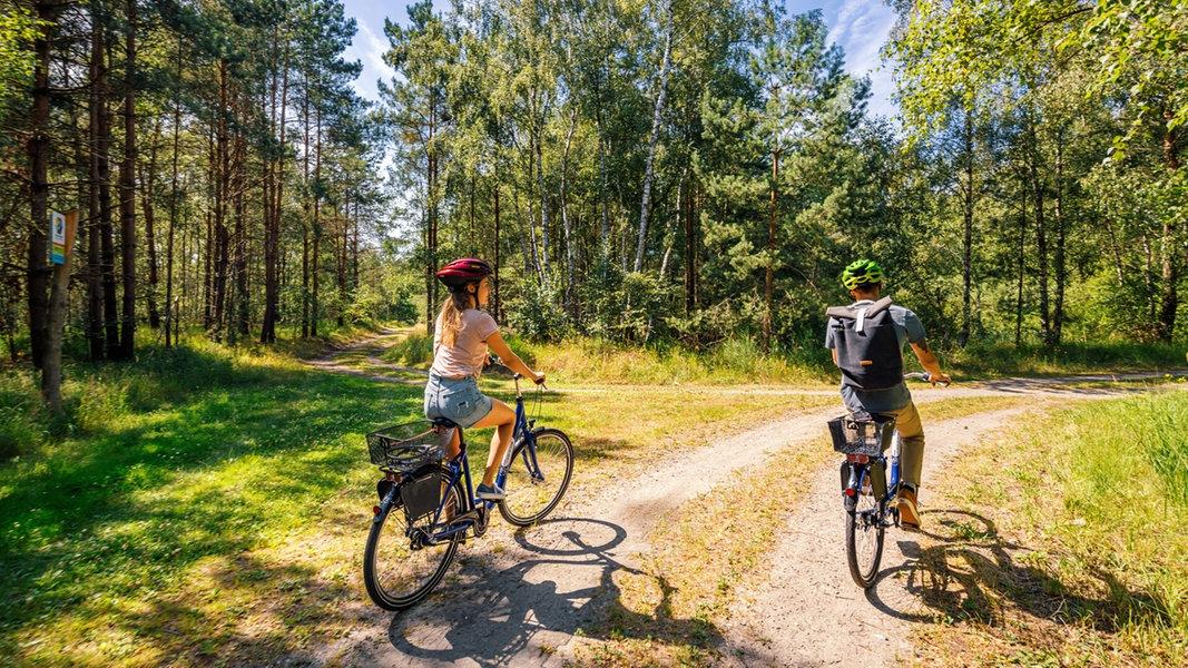 Rostocker Heide: Küstenwald an der Ostsee