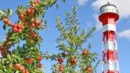 Leuchtfeuer und Apfelbäume im Alten Land © Tourismusverband Altes Land Foto: Diana Asbeck