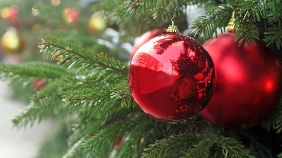 Ndr Weihnachtsbaum.Was Man Aus Alten Tannenbäumen Machen Kann Ndr De Ndr 2 Programm