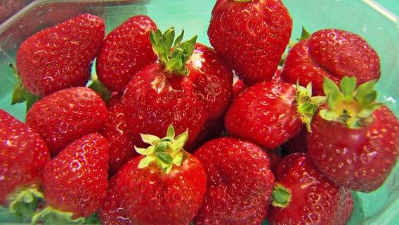 Wie Gut Sind Erdbeeren Aus Dem Supermarkt Ndr De Ratgeber