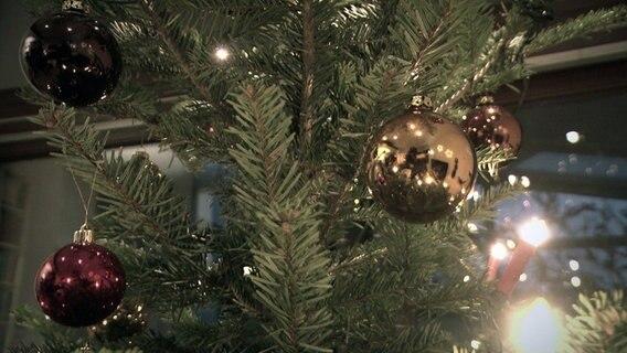 Bauhaus weihnachtsbaum gutschein