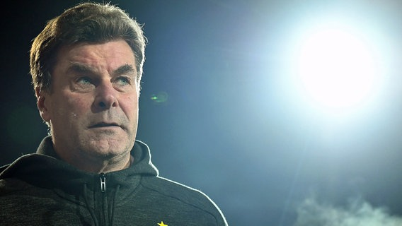 HSV-Trainer Dieter Hecking © Witters