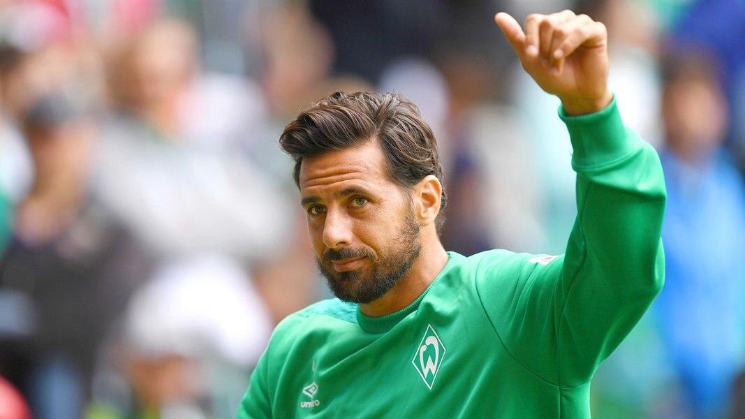 Werder Worms