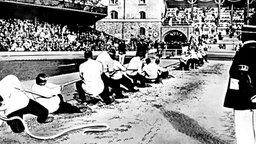 Bei den V. Olympischen Spielen der Neuzeit gehört die Disziplin Tauziehen noch zum Programm. © picture-alliance / dpa