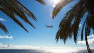 Ein Flugzeug am Himmel vor einem Strand mit Palmen. © picture alliance Foto: Martin Schroeder