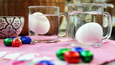 In zwei mit Wasser gefüllten Gläsern schwimmt jeweils ein Ei. © NDR